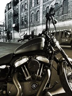Sportster XL1200 - Nightster, Barcelone, Canada #harleydavidsonfatboylow #harleydavidsonsoftaildeluxe #harleydavidsonstreetglidespecial #harleydavidsonfatboybobber #harleydavidsonfatboybaggers #harleydavidsonbagger Harley Davidson Pictures, Harley Davidson Sportster, American Motorcycles, Old Motorcycles, Old Bikes, Performance Parts, Toronto Canada, Bobbers, Trucks