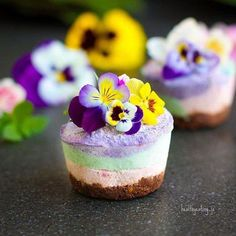 Rainbow Superfood Cheesecakes by @healthyeating_jo 12 mini or 6 muffin size cheesecakes Base 1/2 cup of almonds (or mixed nuts of choice) 1 Tbsp cacao powder 2 Tbsp sugarfree vegan drinking chocolate 1 tsp vanilla extract 1/4 cup chopped dried fruit (soaked 15mins in boiling water and drained) eg Dates figs sultanas Add almonds cacao and drinking chocolate to food processor and blend for a few seconds. Add the drained dried fruit and blend until crumbly. Press into bases of silicon muffin…