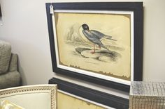 Artwork for the home with birds and hunting theme.  Robin's Nest Interiors - Louisville Interior Design & Home Accessories Boutique located in the heart of Middletown, KY.