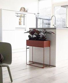 ferm LIVING Plant Box ochre: https://www.fermliving.com/webshop/shop/green-living/plant-box-ochre.aspx