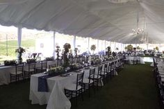 Allie's Party Rental Tent Liner and Pole Covers