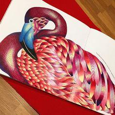 Flamingo Faber Castell Polychromos Animal Kingdom by @milliemarotta  #fabercastell #milliemarottaanimalkingdom #flamingo #fabercastellpolychromos #adultcoloringbook #coloring #coloringbook #milliemarotta #animalkingdom #coloredpencils
