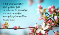 nemeapress: Ημέρα της μητέρας Stop Thinking, Good Morning Greetings, Greek Quotes, Flowering Trees, Happy Birthday Wishes, Happy Mothers Day, Wise Words, Place Card Holders, Cards