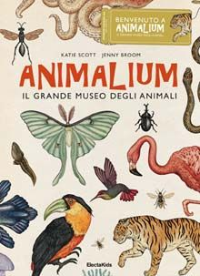 Animalium, il grande museo degli animali - Katie Scott, Jenny Broom - Libro - - Electa Mondadori