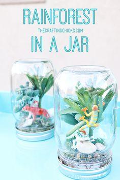 Adorable rainforest in a jar idea!