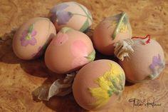 Pregateste ouale Eggs, Blog, Egg, Blogging, Egg As Food