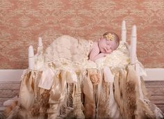 Photography By Lora Lynne - Welcome Daytona Beach Florida, Form Builder, Professional Photography, Maternity Photography, Maternity Photos, Pregnancy Photos, Maternity Pictures, Maternity Session