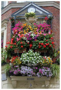 balcon fleurì