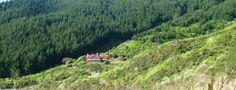 Homewood Bay Lodge, private luxury, Marlborough Sounds, New Zealand Marlborough Sounds, Bay Lodge, South Island, House In The Woods, New Zealand, Vineyard, Destinations, Country Roads, Luxury