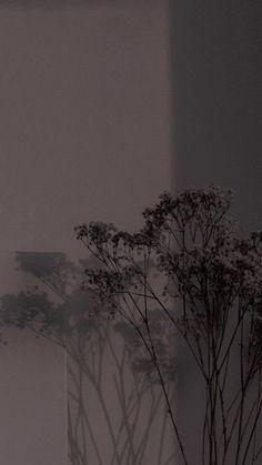 Et Wallpaper, Iphone Wallpaper Images, Iphone Wallpaper Tumblr Aesthetic, Black Aesthetic Wallpaper, Aesthetic Wallpapers, Vintage Flowers Wallpaper, Flower Background Wallpaper, Cute Patterns Wallpaper, Scenery Wallpaper