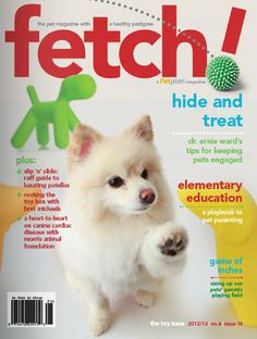 Get in the game with these playful pet health tips from the Toy issue of fetch! magazine!