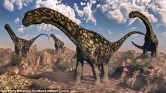 Analysis of the leg bones show that the vast titanosaurs were young adults, but still growing. So the fully grown specimen would have been even bigger. This dinosaur is able to be much more accurately measured than Argentinosaurus (illustrated) was, because only a dozen of the latter's bones were ever found