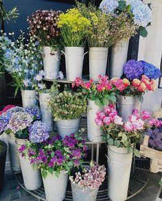 Those Liberty blooms  @libertylondon - Thanks to @jasminaparade