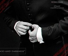 'Blood and darkness' series Harry Potter Anime, Harry Potter Universal, Harry Potter Fandom, Harry Potter World, Professor Severus Snape, Alan Rickman Severus Snape, Severus Rogue, Snape And Lily, Dont Call Me