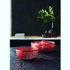 Cactus cestino bianco a soli 3833 #alessi #Centrotavola #CSA #MartaSansoni
