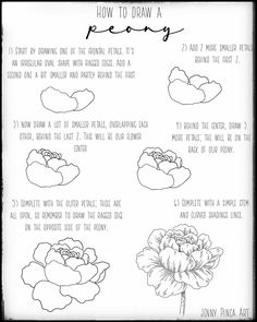 "Jen | Floral & Nature Drawings on Instagram: ""Learn how to draw a #peony with my new tutorial.⁣ ⁣ 🍃 Remember to use the hashtag #jenfloralturorial and tag me if you use this tutorial,…"""
