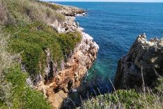 Park at Plage de la Garoupe/Plage Keller or along Avenue André Sella and start the walk from there! Cap D Antibes, Le Cap, Parcs, Hiking, Tours, Water, Outdoor, Pathways, Walks