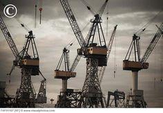 Hamburg construction cranes