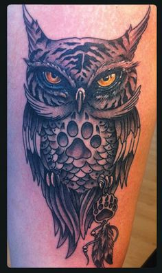 Owl tiger