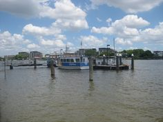 Hawthorne Ferry Wharf on the Brisbane River, Brisbane, QLD