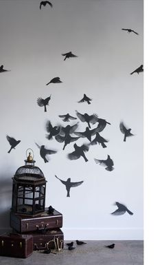 free birds wall stickers -- what a great idea for a boring wall.