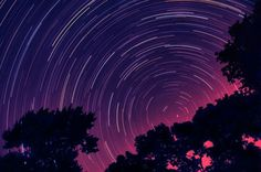 Star Trails / Dream by Moniza