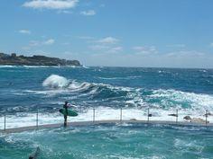 beachcomber: swell bronte beach sydney australia surfing