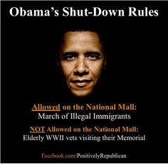 Illegal Immigrants allowed to rally on the National Mall - Veterans shut out of WWII Memorial. 's Rules Stand Up America, National Mall, Government Shutdown, Dont Tread On Me, Waiting For Him, Our Country, Barack Obama, We The People, Wake Up