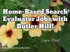 Home-Based Search Evaluator Jobs with Butler Hill! / Learn More!