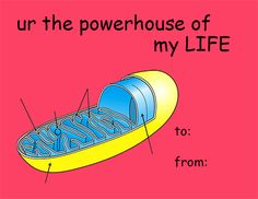 Nerdvalentines: u r the powerhouse of my life Valentines Day Card Memes, Science Valentines, Funny Valentines Cards, Funny Cards, Valentines Tumblr, Love Memes, Funny Memes, Pick Up Lines Cheesy, Think