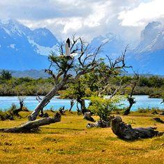 Parque Nacional Torres del Paine, XII Región de Magallanes y la Antártica Chilena. #Padgram