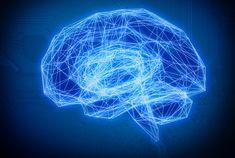 Polish P2P learning platform Brainly raises $14M after hitting 100M users
