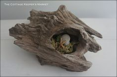 Waikiki Driftwood 3 by TheCottageKeepers on Etsy, $34.00