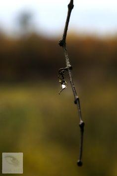 Copyright © 2012 Sarah Schlegel. Alle Rechte vorbehalten. All rights reserved.