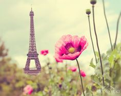 Paris Photography Eiffel Tower Poppies Nature French by Studio Yuki, $20.00