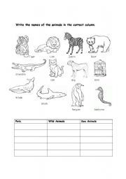 Spider Adaptation Worksheet Google Search Education Science