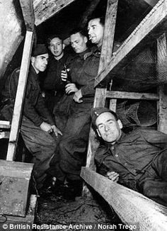 Churchill's secret guerillas who were poised to execute senior British figures if there was a risk of them helping the Germans after Nazi invasion   Mail Online