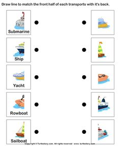 Water Transport worksheet and coloring pages:
