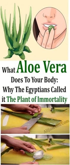 What Aloe Vera Does To Your Body: Why The Egyptians Called it The Plant of Immortality #herbal #health #beauty #body #healthy #fitness   #skin #lips #skincare