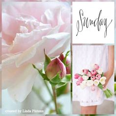 Happy Sunday Quotes, Weekend Quotes, Morning Wish, Sunday Morning, Beautiful Collage, Good Morning Greetings, Morning Messages, Rose Cottage, Months In A Year