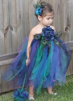 little lady peacock!