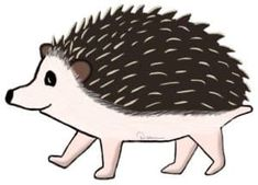 One of the first thing new hedgie owners ask is, What kind of cage does a hedgehog need? Learn about a proper hedgehog cage and common pitfalls to avoid. Hedgehog Wheel, Hedgehog Food, Hedgehog Facts, Hedgehog Hibernation, Mammals, Pets
