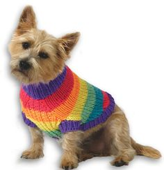 Free Knitting Pattern for Rainbow Dog Sweater - Striped sweater in 4 sizes to fit your pooch: Chest measurement 14 Knitted Dog Sweater Pattern, Dog Coat Pattern, Knit Dog Sweater, Sweater Patterns, Coat Patterns, Knitted Coat, Knitting Patterns For Dogs, Knitting Projects, Free Knitting