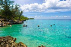 Conoce 10 lugares para bucear en Cuba (+video) #ConoceCuba #bucear #buceo #cuba #Cubaesmidestino