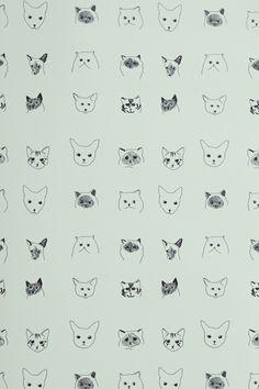 Black Cat Screensavers and Wallpaper - WallpaperSafari   Many cats ...