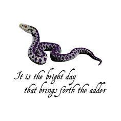 Adder - Snake - Reptile - Nursery Art - Wall Art - 8x8 Fine Art Print - Shakespeare Quote - Julius Caesar - Shakespeare's Menagerie