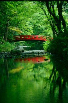 緑が深まる(ID:3516550)拡大ページ - 写真共有サイト:PHOTOHITO