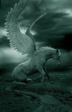 <3 Pegasus/Pégaso: o grande corcel alado do herói grego Belerofonte nasceu do sangue de Medusa e transportou o raio de Zeus. Pégaso simboliza a velocidade e as tempestades. Um cavalo idêntico existia nas lendas medievais - o hipogrifo, símbolo do poder inato e da capacidade para tranformar o mal no bem. Para Shakespeare, Pégaso era «ar puro e fogo» <3