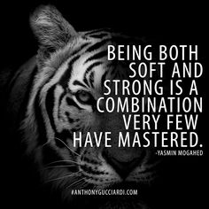 Being both soft and strong is a combination very few have mastered. Tiger Quotes, Lion Quotes, Animal Quotes, Me Quotes, Motivational Quotes, Inspirational Quotes, Qoutes, Strong Quotes, Positive Quotes