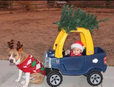 Dressed for the Holidays - BabyCenter